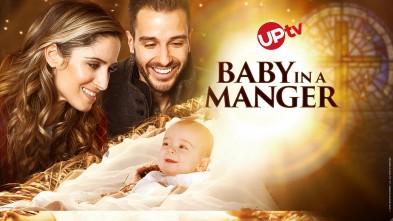 Baby in a Manger