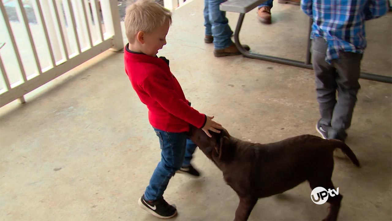 Bringing Up Bates - Bringing Up Bates – Cute Canine Or Problem Pup?