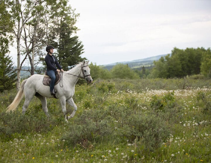 Heartland Season 13 Episode 3